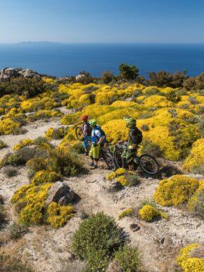 Isola d'Elba: paradiso mondiale dei ciclisti